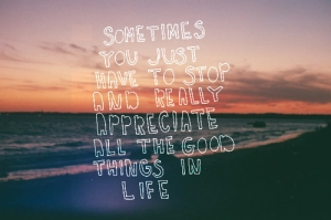 50839-Appreciate-All-The-Good-Things-In-Life