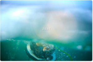 O0A8219-May-30-2014-AQUABUMPS-zest